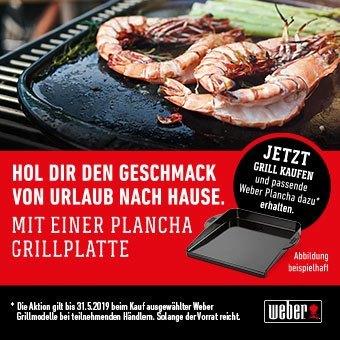 Jetzt Grill kaufen & passende Weber Plancha dazu erhalten*